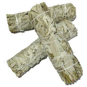 sauge blanche purification feng shui