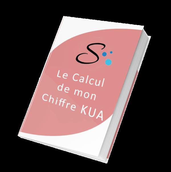 le calcul de mon chiffre kua c'est facile